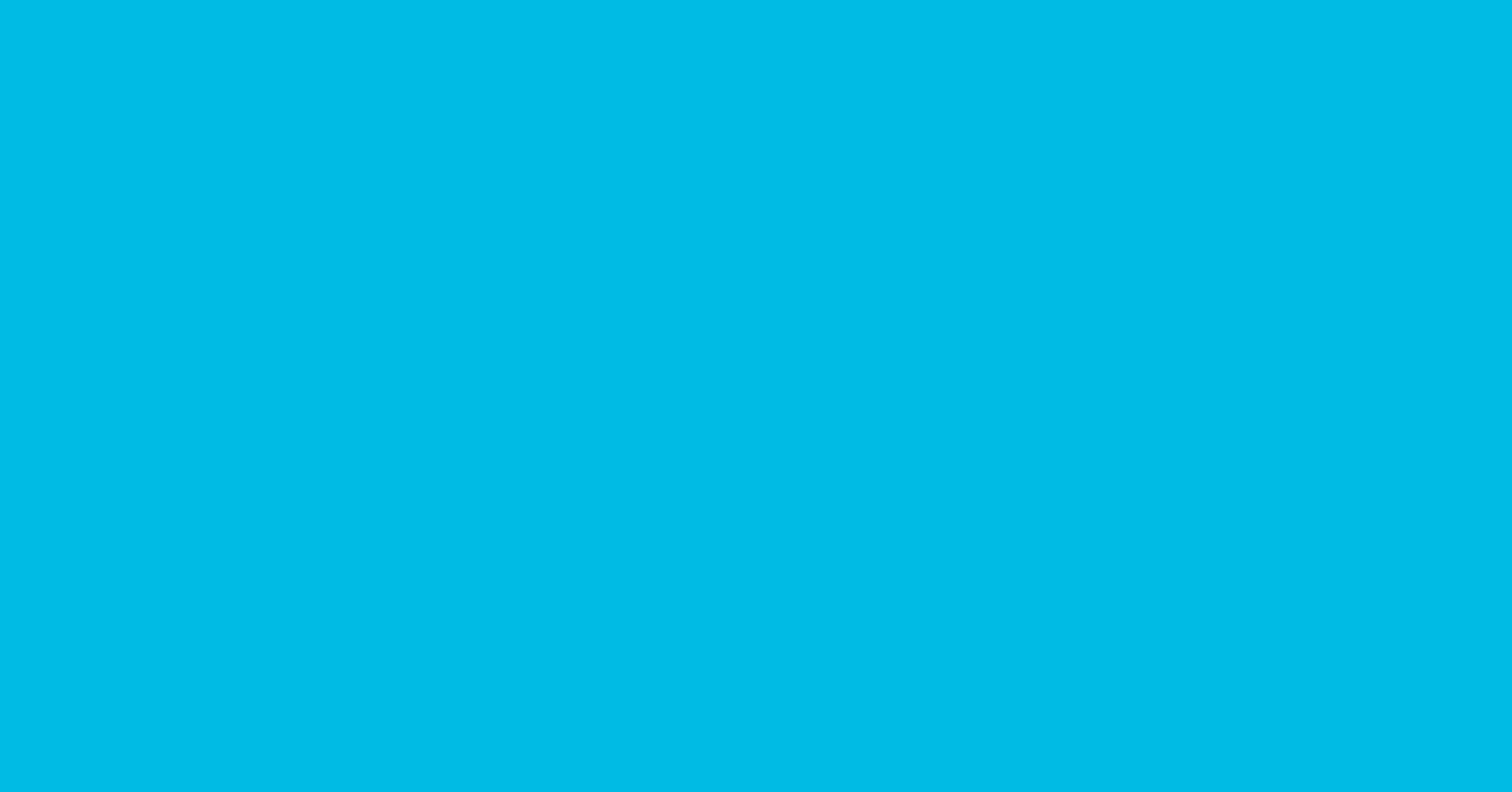 UNF:s Logotyp
