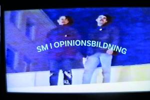 SM i Opinionsbildning 2018
